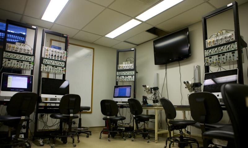 the Neurolab